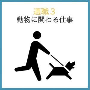 感受性が強い人の適職3:動物に関わる仕事